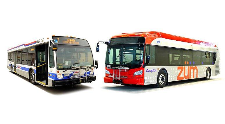 brampton-bus